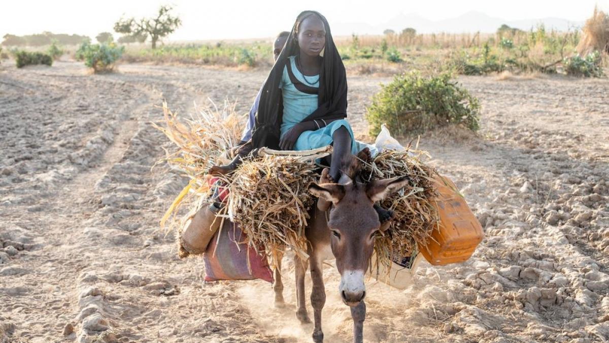 Mädchen in der Sahelzone, die auf einem Esel reitet. Foto von Rebecca Rempell