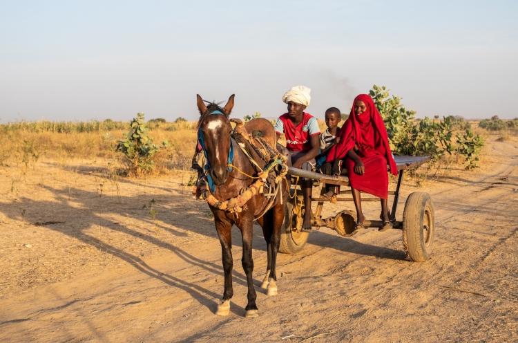 Familie in der Sahelzone auf einem einfachen Pferdewagen