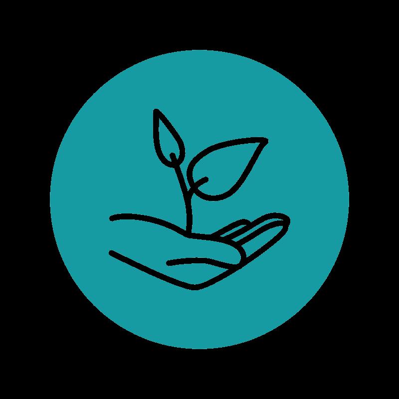 Icon Künstler ermutigen (Hand mit wachsender Pflanze)