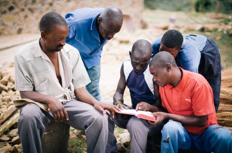 Ryhmä miehiä tutkii Raamattua Afrikassa.